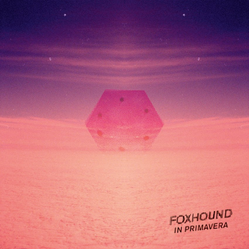 foxhound-in-primavera