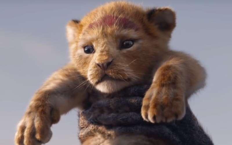 Il re leone: la disney ha pubblicato il primo teaser del nuovo film